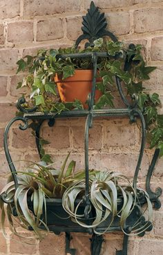 This refined Florentine Wall Planter enhances your outdoor space with delicate scrollwork and a hand-applied verdigris finish with gold highlights.