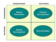 "The image represents Ansoff's Matrix. We position the Zenba Relaxation bathtub in the ""Product Development""-category, as we are targeting an existing market with our new (developed and differentiated) product."