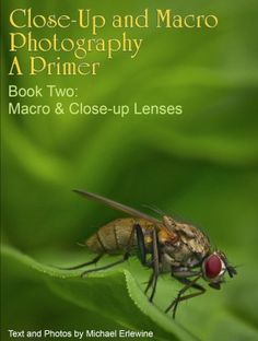 Free Ebooks  part 1 & 2 about Close Up/ macro photography