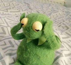 The post appeared first on Kermit the Frog Memes. Funny Kermit Memes, Cartoon Memes, Muppet Meme, Sapo Kermit, Les Muppets, Sapo Meme, Frog Wallpaper, Animal Wallpaper, Frog Meme