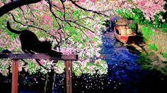 以前に描いた絵を色編集加工してみました、水郷の街をお絵描きしたもので、僕のお気に入り作品です。  季節の中に埋もれて・大塚博堂 http://youtu.be/MekYCMCnVbE