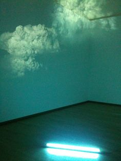 Diana Thater - dreamy #installation #art
