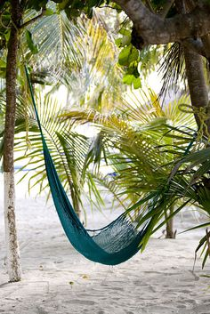 #to sit and swing... #Caribbean_Beach_Resort ~ http://VIPsAccess.com/luxury-hotels-caribbean.html     -   http://vacationtravelogue.com Best Search Engine For Hotels-Flights Bookings   - http://wp.me/p291tj-8K