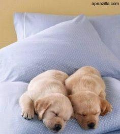 #naptime