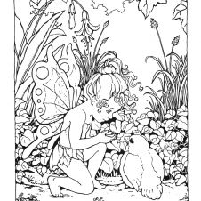 detailed fairy coloring pages for adults free printable - Fairy Coloring Pages Printable Free 4
