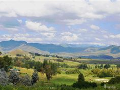 Clarens, Free State, South Africa Beautiful Scenery, Beautiful Places, Hiking Photography, Off Road Adventure, Free State, Walkabout, Africa Travel, Live, Wild Flowers