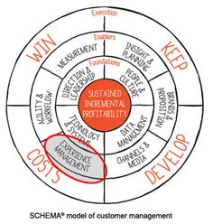 Customer experience  management!