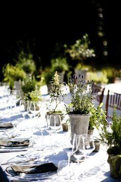 Table Vegetation
