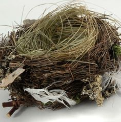 "6"" Bird Nests Twigs, Grass, Feathers & Cedar Shavings $7.29 each    All natural materials including twigs, grasses, grapevine, bark and even feathers. 3"" tall x 6 "" diameter."