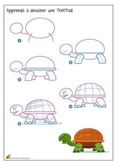 Apprendre à dessiner une tortue, méthode facile pour dessiner une tortue