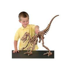Velociraptor Fossil Puzzle B. C. Bones,http://www.amazon.com/dp/B000I1BY60/ref=cm_sw_r_pi_dp_dbhjtb023A7W4SN4