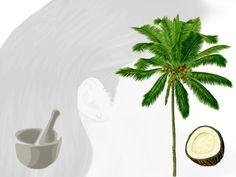 Facile ricetta per creare un cremoso balsamo per capelli dalle proprietà estremamente idratanti e nutrienti, a base di esterquat, olio di cocco e lecitina.