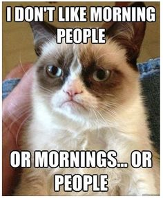 Some days, I agree... LOL