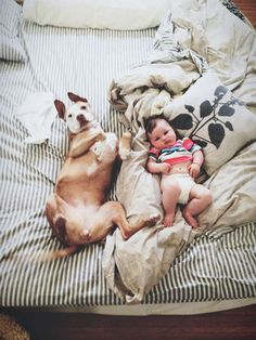 """Like baby, like dog! I don't know where I should put this, but it was too damn cute to not """"repin"""""""
