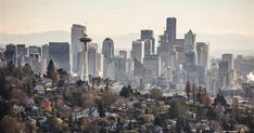 Seattle extends streak as nation's hottest housing market to 15 months.  January 30, 2018 at 6:55 am      http://qoo.ly/k253v