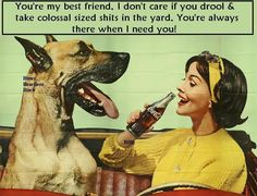 Coca-Cola and Great Dane Vintage Advertisement Love My Dog, Puppy Love, Weimaraner, Coca Cola Vintage, Dane Puppies, Great Dane Dogs, Dog Car, Girl And Dog, Dog Quotes
