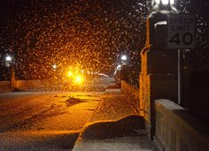 """This is an image of fishflies covering a bridge and being caught in the streetlight, looking almost like snowflakes. Cecilia identifies and empathizes with the fishflies because of their short lifespans. They symbolize the """"suicide sickness"""" that falls over the town and the girls when Cecilia dies. -Max"""