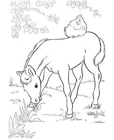 Collection Of Pony Coloring Pages To Print - Free Coloring Sheets Farm Animal Coloring Pages, Preschool Coloring Pages, Coloring Pages To Print, Coloring Book Pages, Printable Coloring Pages, My Little Pony Coloring, Coloring Pages For Kids, Kids Coloring, Vintage Coloring Books