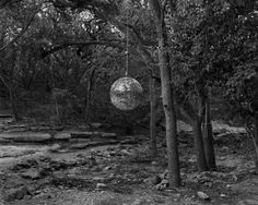 party in the wood disko ball