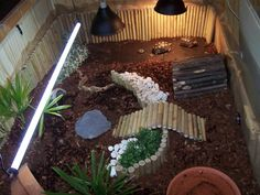 INDOOR enclosures - Page 16 - Reptile Forums