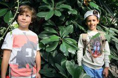 Nina Elenbaas | The Jungle is Ours