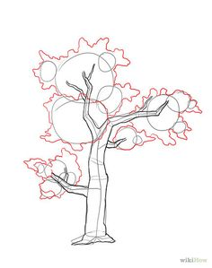 drawing trees step by step - Google Search