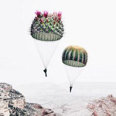 Les-magnifiques-images-surrealistes-de-Luisa-Azevedo-12 Les magnifiques images surréalistes de Luisa Azevedo