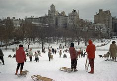 """natgeofound: """"Sledders clamber up a snowy hill in Central Park, December Photograph by Bates Littlehales, National Geographic """" National Geographic Archives, National Geographic Traveler Magazine, New York Photos, Old Photos, Travel Magazines, Before Us, Sled, Back In The Day, Central Park"""
