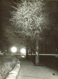 Nicolae Ionescu (1903 - 1975) Fotograf al Bucurestilor – altmarius 1975, Snow, Outdoor, Outdoors, Outdoor Games, The Great Outdoors, Eyes, Let It Snow
