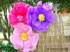 DIY LARGE tissue flowers Tutorial ! by frankie