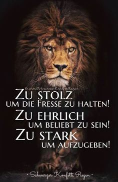 Too proud to hold the fish suits me! Lion Quotes, German Quotes, Feeling Happy, True Words, Wisdom Quotes, Cool Words, Lions, Favorite Quotes, Quotations