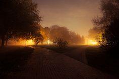 Foggy Park http://kontramax.com
