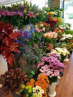 Our display stand of beautiful flowers