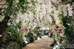 Rainforestthewedding Wedding Entrance, Entrance Decor, Unique Weddings, Wedding Designs, Planting Flowers, Dolores Park, Wedding Decorations, Castle, Wedding Inspiration