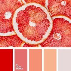 Цветовая палитра №2880 / Color palette #2880 #incolorbalance_fruitcolor