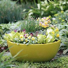edible container garden | Contanier Gardening 3 150x150 Container Gardening Guidelines