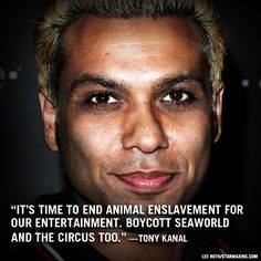 It's time to end animal enslavement for our entertainment. Boycott SeaWorld and the circus too. -Tony Kanal, No Doubt