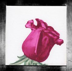 """Visit my ExcitementAdventure shop at etsy dot com for this giclee print of a watercolor rose! You choose the size! All orders must be under 17"""" inches in height or width. I can customize any size for your frame, so long as it is under 17"""" inches. All work is printed on archival paper with inkjet. (Frame not included.) Thank you so very much for taking an interest in my work. I look forward to bringing you more paintings, drawings, and three-dimensional work in the future!"""