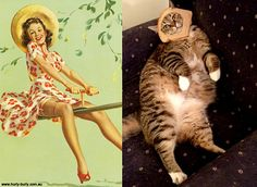 30 Sexy Cats That Look Like Pin-up Girls - Cutest Paw