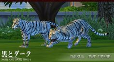 Daislia Two Tigers at Noir And Dark Sims via Sims 4 Updates