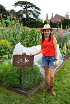 Big Allotment Challenge - I'm in! | Grow Your Own Veg Blog. Gardening and Food Blog.
