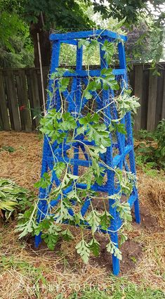 Superbe How To Build A Wooden Garden Obelisk