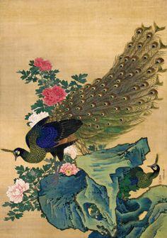 MARUYAMA OKYO 牡丹孔雀図(安永3年=1774年、絹本着色)丸山応挙