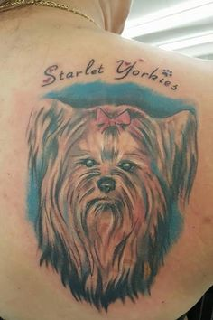 de 8 coolest yorkshire terrier tattoo designs in de wereld and more yorkies pinterest. Black Bedroom Furniture Sets. Home Design Ideas