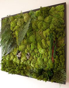 DIY Vertical Garden Design Ideas For Your Home Ladder vertical garden . the excellent Do It Yourself job for anybody with a small yard yet who still intends to garden.Vertical horticulture isn't really only efficient its likewise beautifulLike Vertical Garden Design, Vertical Gardens, Vertical Planting, Air Plants, Indoor Plants, Hanging Plants, Green Plants, Garden Ideas To Make, Moss Art