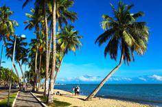 Praia de Ponta Verde, em Maceió, Alagoas