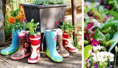 Wie süß sind denn bitte diese Gummistiefel-Blumentöpfe?! Was für ein Spaß und was für eine süße Idee!!