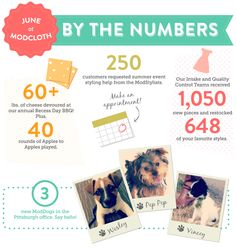 We're infographic nerds, so we put together our fave stats from June! See: three new puppies in the Pittsburgh office.
