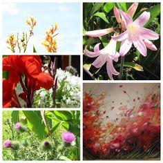 Flores de Pta del Este Uruguay