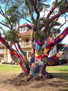 Decorative knitted squares adorn this tree outside RAVE - Rotorua  Arts Village Experience, Rotorua, New Zealand